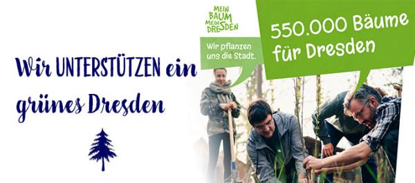Mein-Baum-mein-Dresden