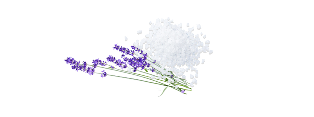 Lavendel-Salz